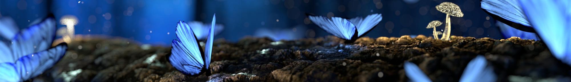 Recevez la newsletter du site Cristalange de bijoux lithothérapie et bijoux anges gardiens et solutions bien-être