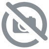 Rock crystal skull spinelle necklace